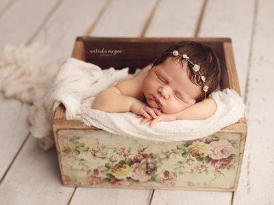 Natasha Megan - Adelaide Newborn Photography, Natasha Megan Photography, Newborn Thumbnail